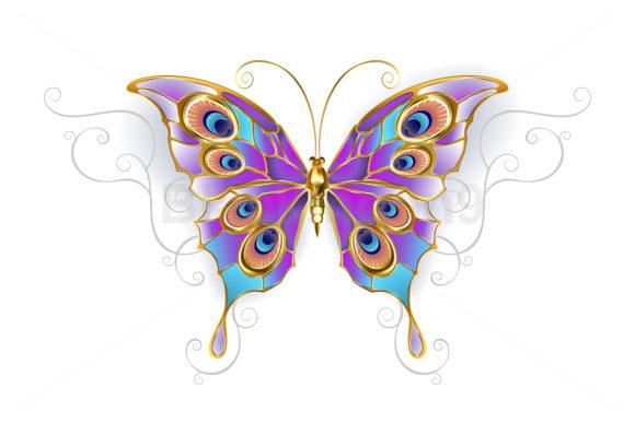 Jewelry Butterfly Peacock Graphic Illustrations By Blackmoon9