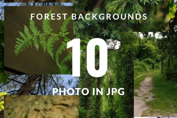 10 Digital Backgrounds - Forest Photo Graphic Nature By Halyna Kysil Designs