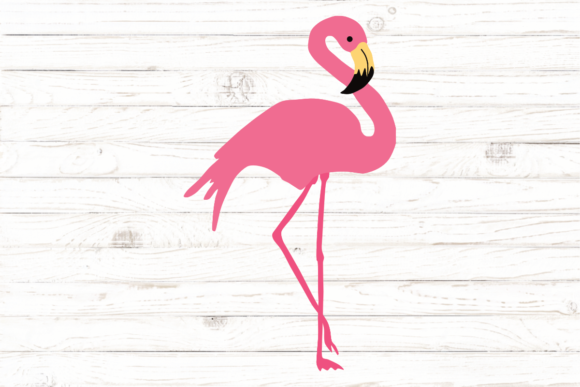 Flamingo Graphic Illustrations By rayan