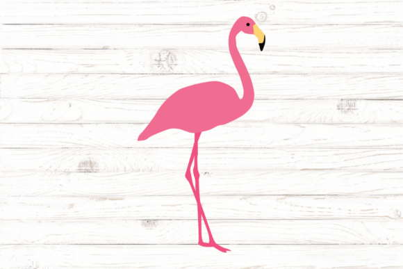 Pink Flamingo Graphic Illustrations By rayan