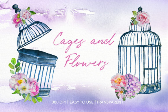 Watercolor Cages and Flowers Designs Graphic Illustrations By artcreationsdesign