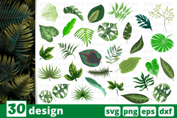 Print on Demand: 30 Tropical Leaves Desings  Bundle Graphic Crafts By SvgOcean