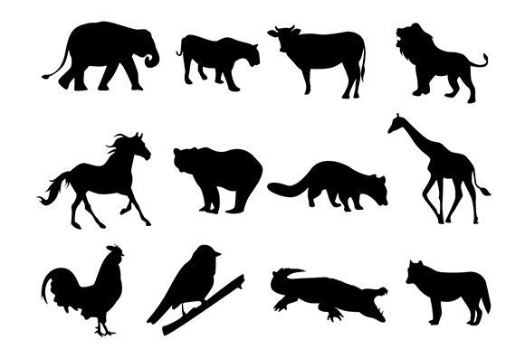 Animal Shilouette for Zoo Pattern Design Graphic Illustrations By ronscreativedesign1