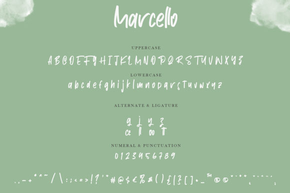Marcello Font Image