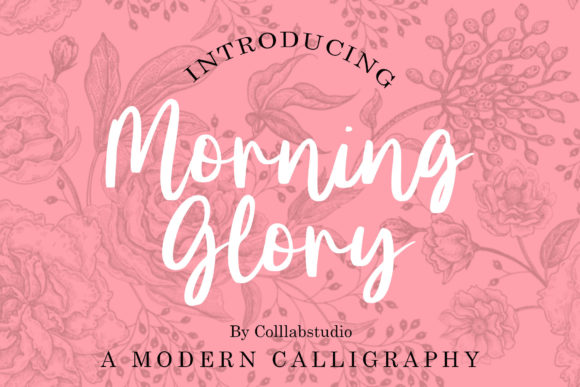 Print on Demand: Morning Glory Script & Handwritten Font By colllabstudio