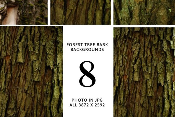 Set of Digital Backdrops - Tree Bark Bac Graphic Nature By Halyna Kysil Designs
