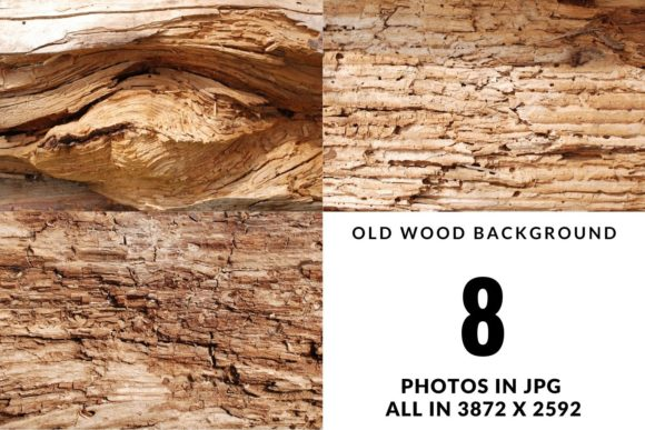 Set of Old Wood Pattern and Texture Gráfico Naturaleza Por Halyna Kysil Designs