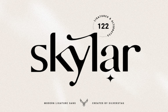 Print on Demand: Skylar Sans Serif Font By SilverStag