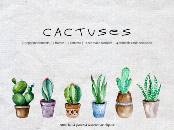 Watercolor Cacti, Watercolor Succulent Graphic Illustrations By Art and Funny