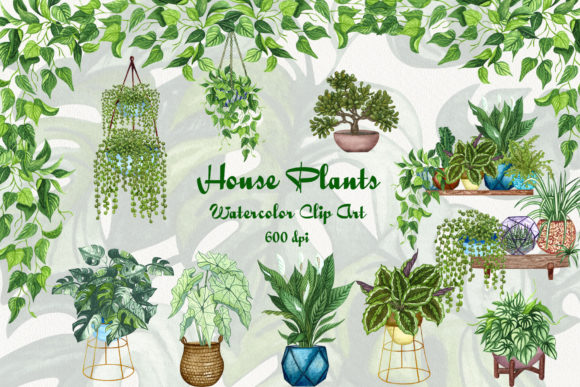 House Plants Watercolor Clip Art Grafik Illustrationen von BarvArt