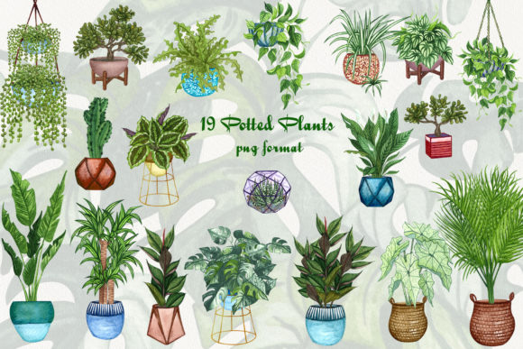 House Plants Watercolor Clip Art Graphic Illustrations By BarvArt - Image 2