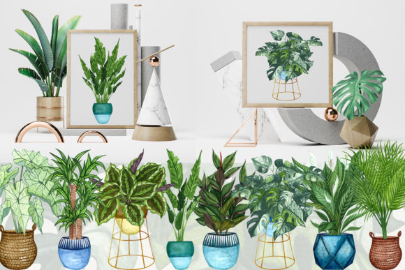 House Plants Watercolor Clip Art Graphic Illustrations By BarvArt - Image 3