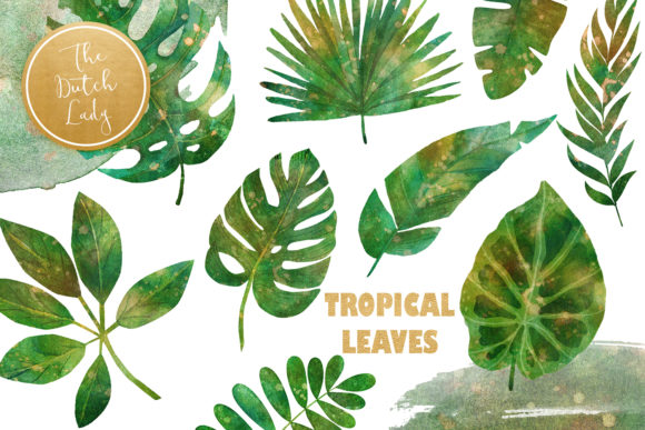 Print on Demand: Tropical Jungle Leaves Clipart Set Graphic Illustrations By daphnepopuliers