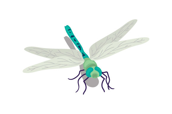 Dragonfly Animales Archivo de Corte Craft Por Creative Fabrica Crafts