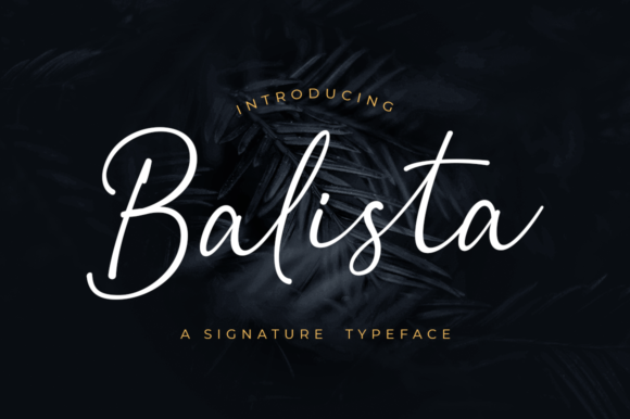 Print on Demand: Balista Script & Handwritten Font By Suby Store