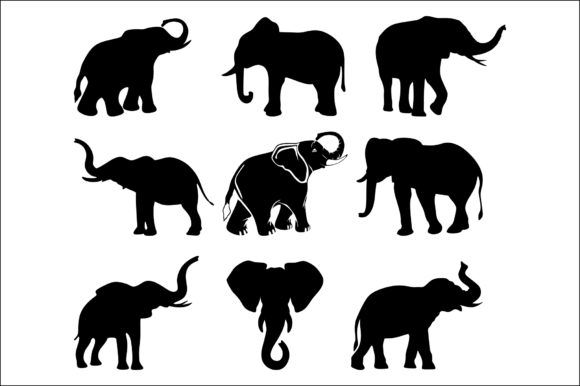 Elephant Graphic Product Mockups By Fast Store
