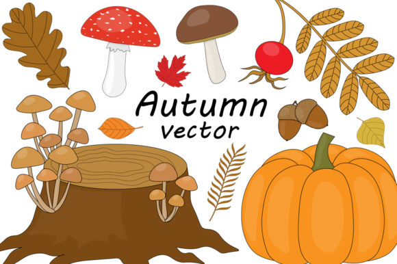 Set Autumn Vector Illustration Graphic Illustrations By shishkovaiv