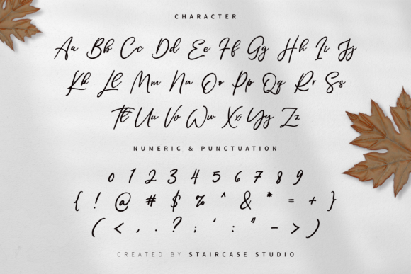 Print on Demand: Single Signature Script & Handwritten Font By staircasestudio20 - Image 8