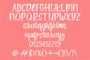 Print on Demand: Shine Bloom Display Font By Rvandtype 8