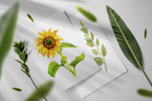 Print on Demand: Sunflower - a Flower of the Sun! Watercor Graphic Illustrations By ElenaZlataArt 3