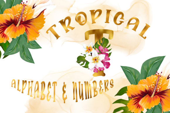 Print on Demand: Tropical Alphabet and Numbers Graphic Illustrations By Andreea Eremia Design