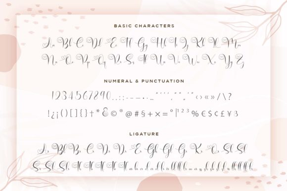 Print on Demand: Brilganttyne Script & Handwritten Font By Naharstd - Image 9