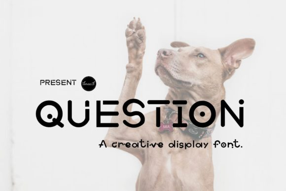 Print on Demand: Question Display Font By tanvara544