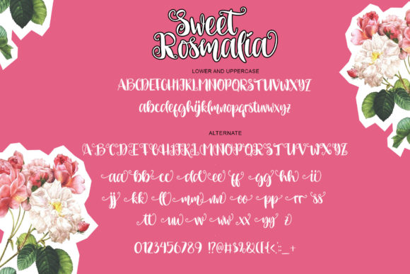 Print on Demand: Sweet Rosmalia Script & Handwritten Font By Fourlines.design - Image 8