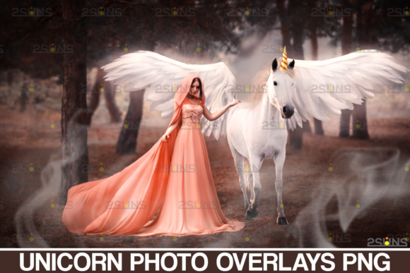 Unicorn Overlay & Flower Png Overlays Graphic Actions & Presets By 2SUNS