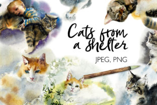 Watercolor Cats from a Shelter Graphic Illustrations By Мария Кутузова