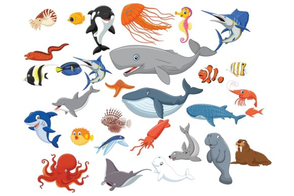Cartoon Sea Animal Life Vector Set Graphic Illustrations By tigatelusiji