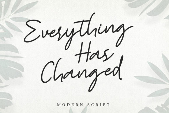 Print on Demand: Everything Has Changed Script & Handwritten Font By Stefani Letter