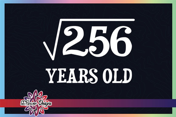 Funny Math Square Root 256 16 Years Old Graphic Crafts By ssflower