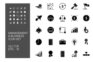 Set of Business and Management Graphic Icons By Hoeda80