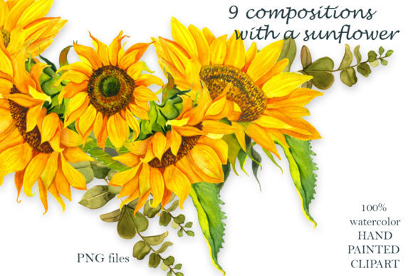 Sunflower Watercolor Clipart Summer Boho Graphic Preview
