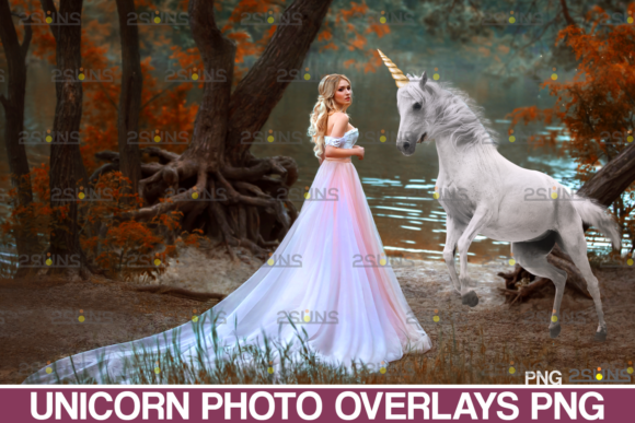 Unicorn Overlay Backdrop Horse Overlays Graphic Actions & Presets By 2SUNS