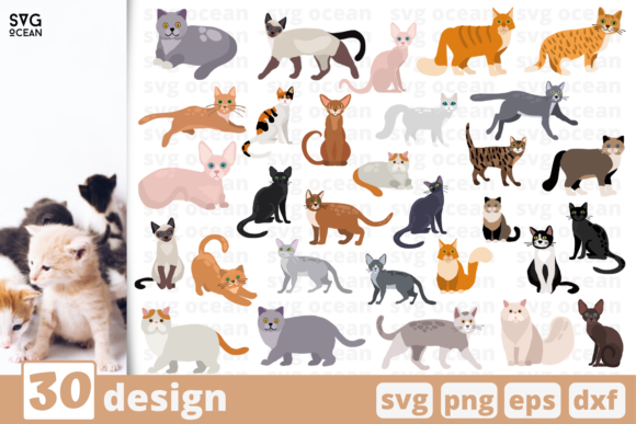 Print on Demand: 30 Cats Designs Bundle Graphic Crafts By SvgOcean