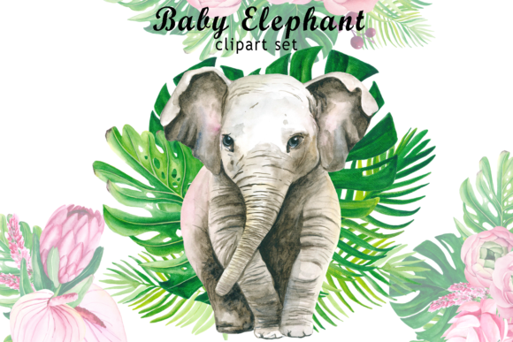 Watercolor Baby Elephant Clipart Graphic Illustrations By colours_of_wind