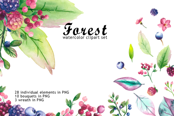 Watercolor Forest Berry Clipart Graphic Objects By colours_of_wind