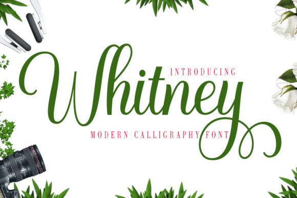 Print on Demand: Whitney Script & Handwritten Font By gatype