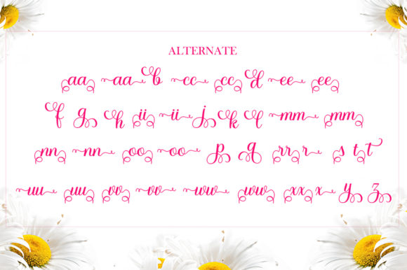 Whitney Font Downloadable Digital File
