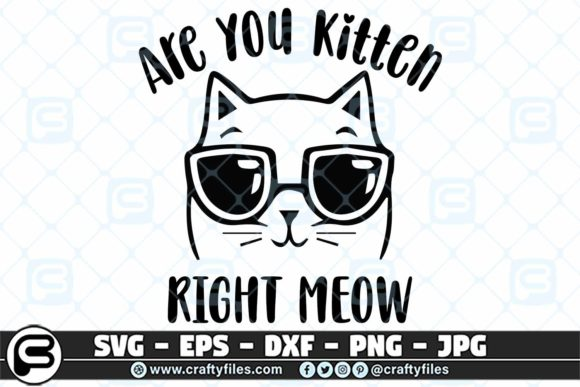 Print on Demand: Are You Kitten Me Right Meow Graphic Crafts By Crafty Files