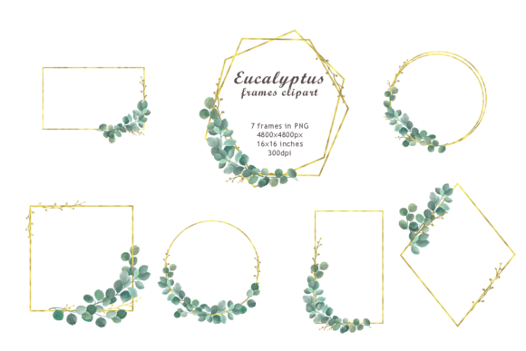 Print on Demand: Watercolor Eucalyptus Frames Clipart Graphic Objects By colours_of_wind
