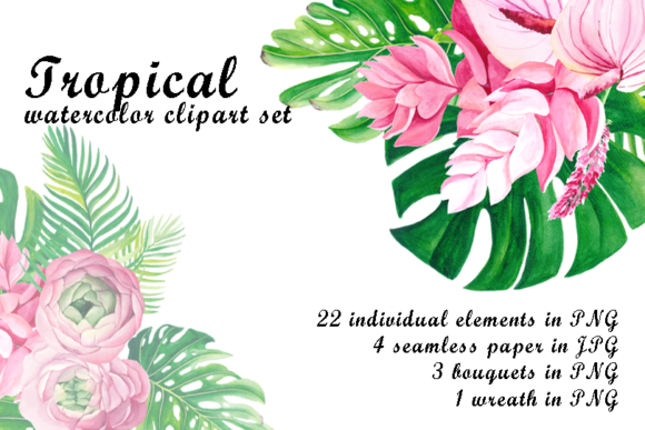 Watercolor Tropical Clip Art Graphic Illustrations By colours_of_wind