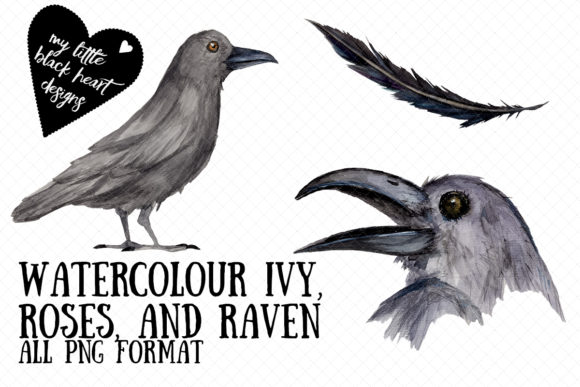Watercolour Ivy, Roses, and Ravens Graphic Illustrations By My Little Black Heart