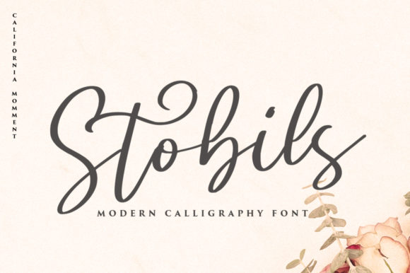 Print on Demand: Stobils Script & Handwritten Font By vultype