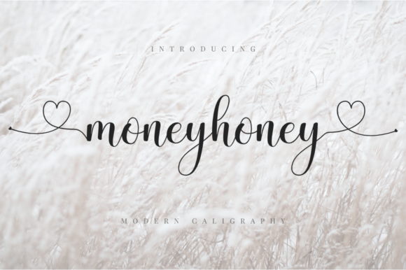 Print on Demand: Moneyhoney Script & Handwritten Font By Haffa Studio