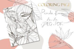 Print on Demand: Printable Digital Coloring Page Flowers Graphic Coloring Pages & Books Adults By DaisyArtDecor