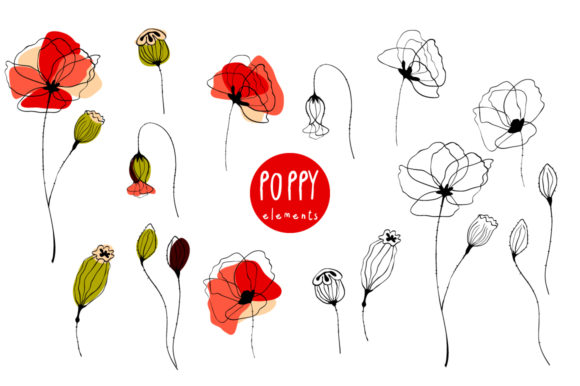 Red Poppy Graphic Illustrations By Snowstorm's Box
