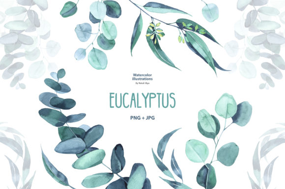 Watercolor Eucalyptus Graphic Illustrations By NataliMyaStore